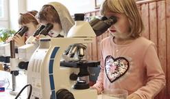 Pozorování mikroskopem